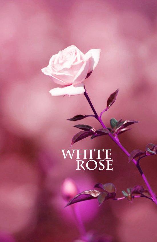 WHITE ROSE 2 Canvas Print