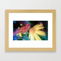 hungry butterfly Framed Art Print