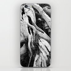 our roots go deep.  iPhone & iPod Skin