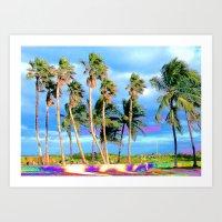 Miami Palms Art Print