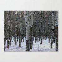 Whispering Aspen Canvas Print