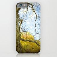 Oak Run iPhone 6 Slim Case