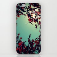 Autumn's Delight iPhone & iPod Skin