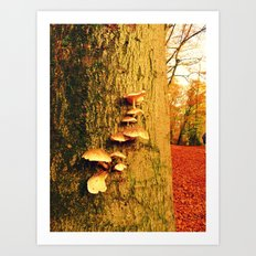 Forest of the Fairies Art Print