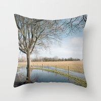 A Cold Afternoon... Throw Pillow
