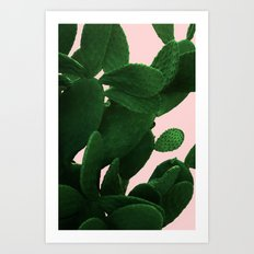 Cactus On Pink  Art Print