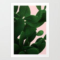 Cactus On Pink  Art Print