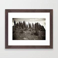 Alpine Landscape  Framed Art Print