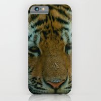 iPhone & iPod Case featuring Baby Tiger  by Dana E
