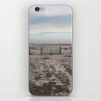 Snowy Gate iPhone & iPod Skin