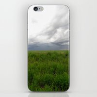 Fields iPhone & iPod Skin