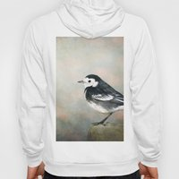 Little Pied Wagtail Hoody