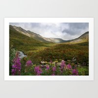 Fireweed & Fall In Alask… Art Print