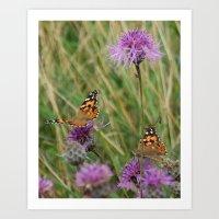 Butterfly Dreams Art Print