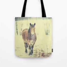 Tote Bag - Wandering beauty - HappyMelvin