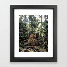 Brisa in the woods Framed Art Print
