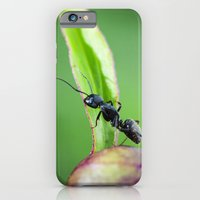 Ants Working On A Peony … iPhone 6 Slim Case