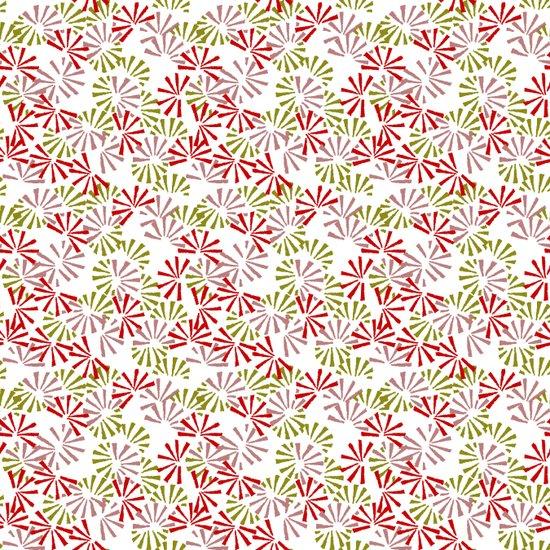 Cinnamon Bonsai Canvas Print