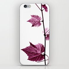 wine leaf abstract I iPhone & iPod Skin