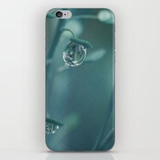 Teardrop iPhone & iPod Skin