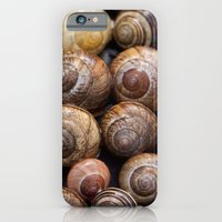 iPhone & iPod Case featuring Snail Shells by TilenHrovatic