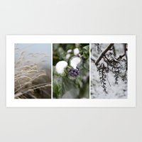 Winter in the Vineyards Art Print
