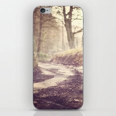 Rudry Lane iPhone & iPod Skin