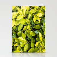 Too Much Green Leaves Stationery Cards