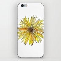 Yellow Gerber Daisy iPhone & iPod Skin