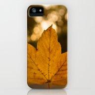 One Leaf - Autumn iPhone (5, 5s) Slim Case