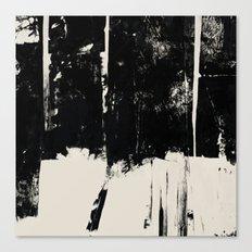 UNTITLED#71 Canvas Print
