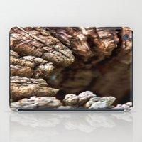 Wood iPad Case