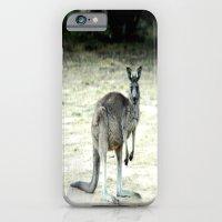 Big Grey iPhone 6 Slim Case