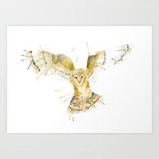 My Barn Owl Art Print