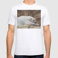 Polar Bear Mens Fitted Tee Ash Grey SMALL