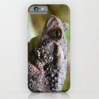 Living Stone iPhone 6 Slim Case