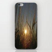 Rising iPhone & iPod Skin