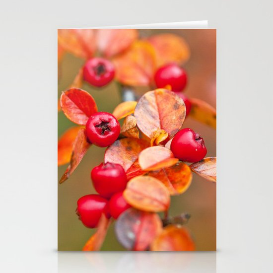 Autumnal Cotoneaster 9379 Stationery Card
