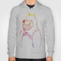 Bear Color Hoody