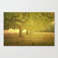 In a Line Canvas Print
