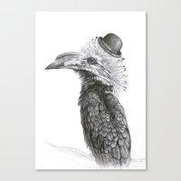 Fancy Hornbill Canvas Print