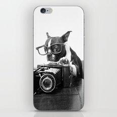 The Photogenic Understudy iPhone & iPod Skin
