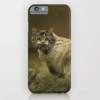 iPhone & iPod Case featuring A Game of Cat and Mouse by TaLins
