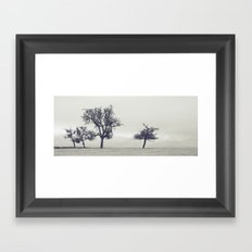 bleak trees... Framed Art Print