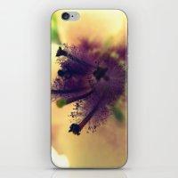 The Fuzz iPhone & iPod Skin