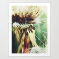 Dandelion: Seeds Vertica… Art Print