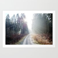 shining wood. Art Print