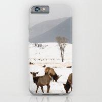 Herd Of Elk In Wyoming O… iPhone 6 Slim Case