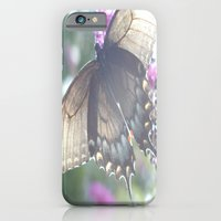 Sheer Butterfly iPhone 6 Slim Case