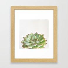 Green Succulent Framed Art Print